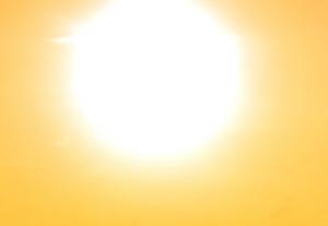 SunnyDay-HusserWindowCleaning