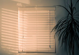 CleanWoodenBlinds-HusserWindowCleaning